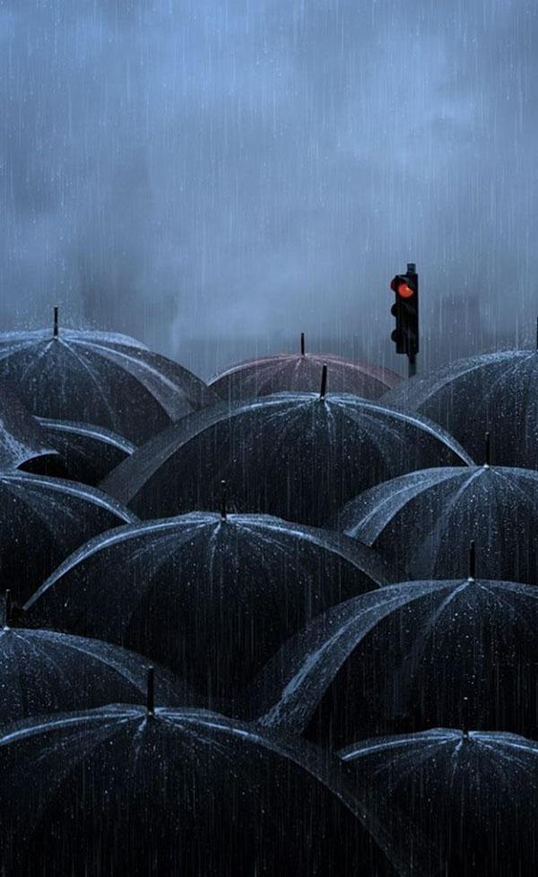 inkulte-couleurs-Caras-Ionut-parapluie