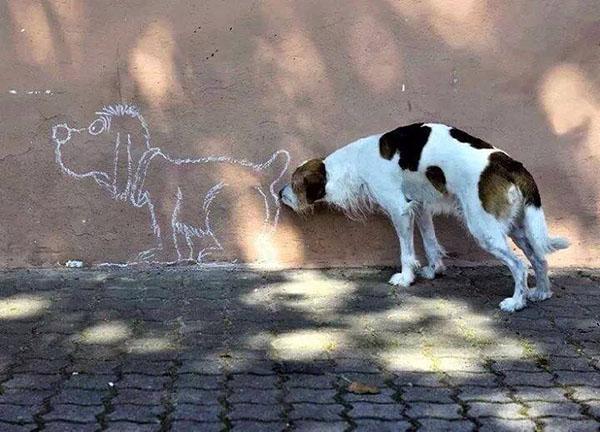 inkulte-doggy-style