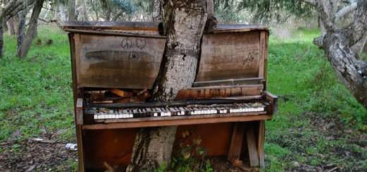 piano-californie