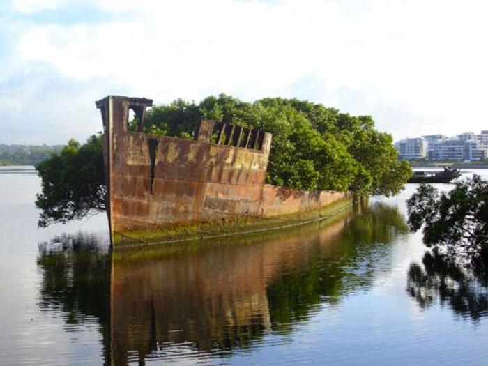 restes-du-SS-Ayrfield-Sydney-australie