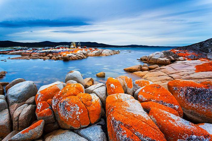 inkulte-Binalong-Bay-Fires-Tasmanie