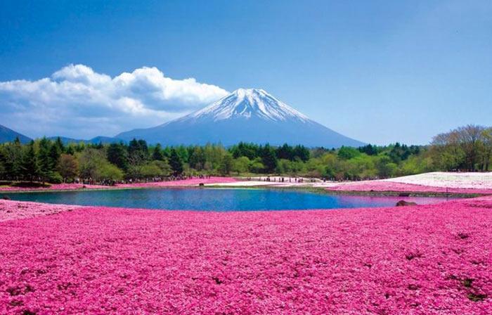 inkulte-Takinoue-Hokkaido-Japon