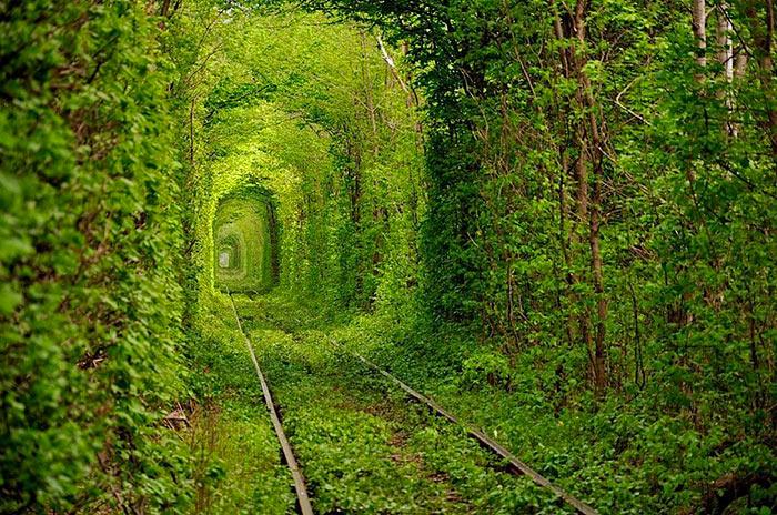 inkulte-Tunnel-de-lamour-Kleven-Ukraine