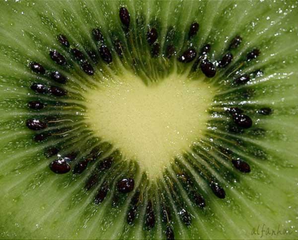 inkulte-arbre-coeur-love-15