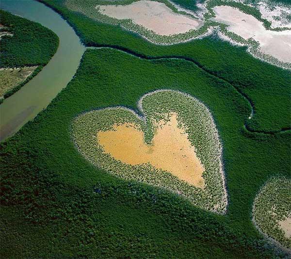 inkulte-arbre-coeur-love-16