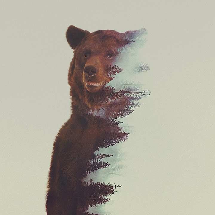 inkulte-andreas-lie-double-exposure-11