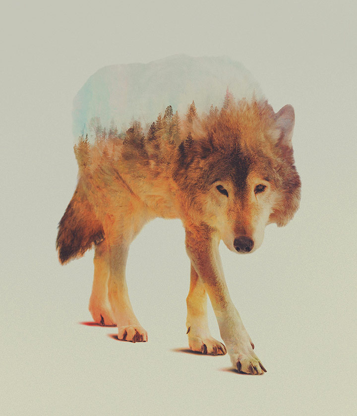 inkulte-andreas-lie-double-exposure-2