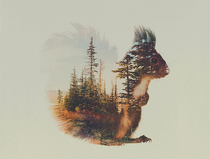 inkulte-andreas-lie-double-exposure-8