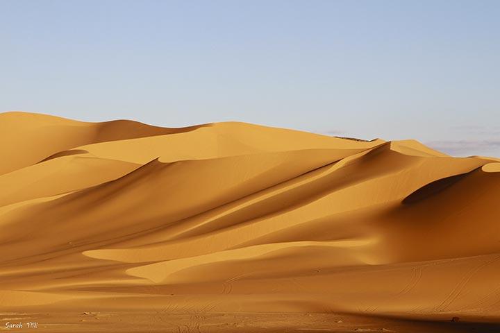 inkulte-sarah-tlili-desert-3